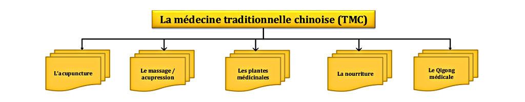 flussdiagramm_tcm_franzosisch